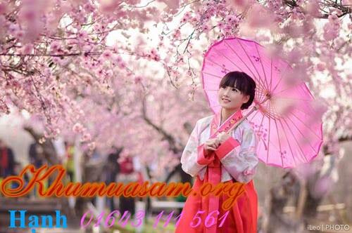 dia-diem-thue-hanbok-02